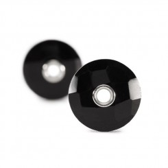 Black Onyx - Earrings